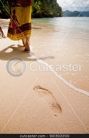 Beach Paradise stock photo, Walking on a beautiful beach by Tyler Olson