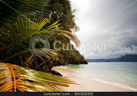 Tropical Beach stock photo, A tropical secluded beach by Tyler Olson