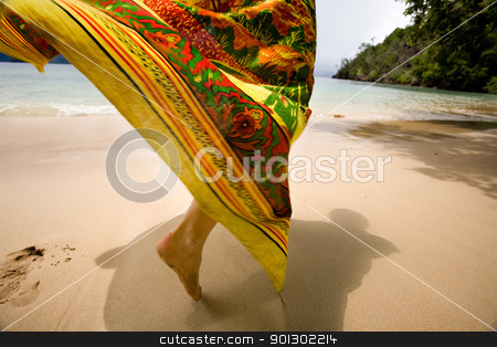Tropical Holiday stock photo, A woman's skirt blowing in the wind on a tropical beach by Tyler Olson