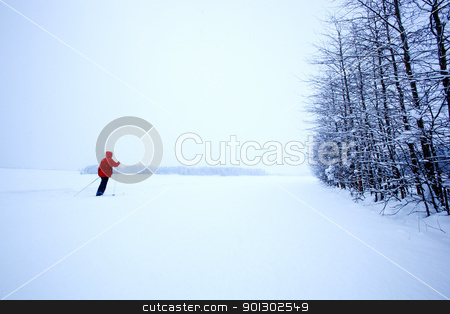 Winter Ski Solitude stock photo, A single cross country skier in winter by Tyler Olson