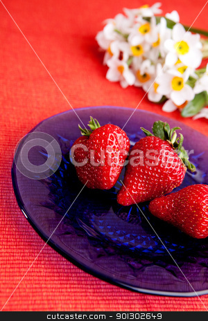 Natural Strawberries stock photo, A plate with strawberries in a natural setting by Tyler Olson