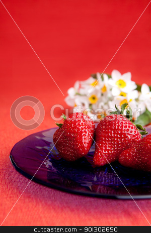 Fresh Strawberry stock photo, A plate of strawberries on a red table cloth by Tyler Olson
