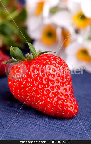 Fresh Strawberry stock photo, A fresh strawberry in a natural outdoor picnic setting. by Tyler Olson