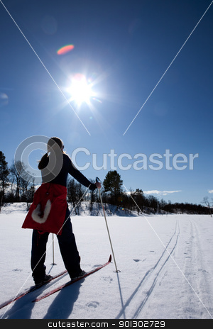 Cross Country Skiing stock photo, A woman in a winter landscape cross country skiing by Tyler Olson