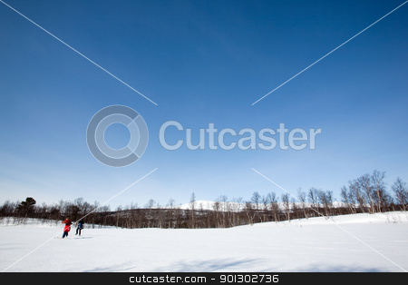 Winter Landscape with Skiiers stock photo, A winter landscape with two skiers skating on the snow by Tyler Olson