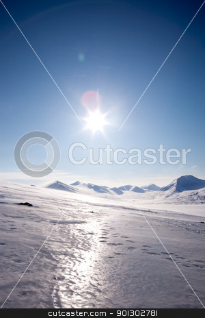 Winter Mountain stock photo, A winter landscape on Spitsbergen Island, Svalbard, Norway by Tyler Olson