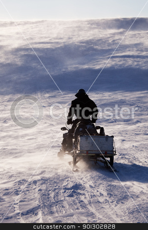 Svalbard Adventure stock photo, A man sitting on a snowmobile on a barren snow landscape by Tyler Olson