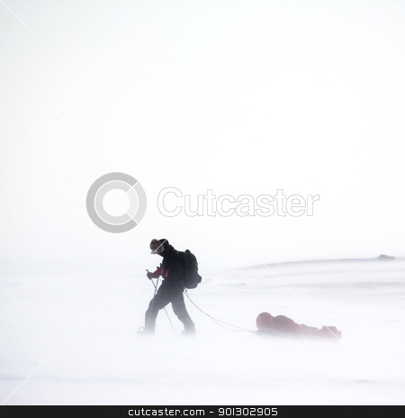 Winter Wilderness Adventure stock photo, An adventurer in a cold winter storm by Tyler Olson