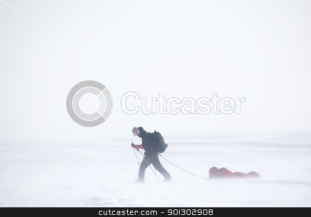 Winter Expedition stock photo, A single person on a winter expedition in a snow storm by Tyler Olson