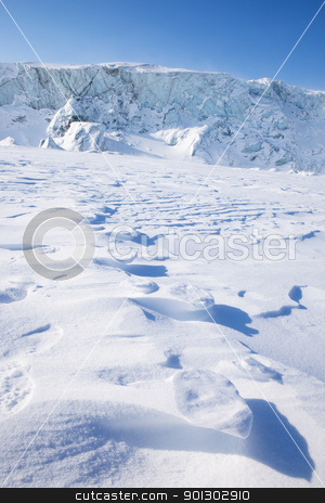 Polar Bear Trail stock photo, Footprints from a polar bear in the snow at Svalbard, Norway by Tyler Olson