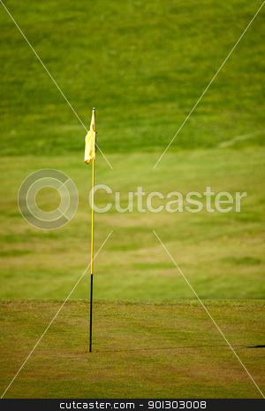Golf Course stock photo, A green on a golf course, shallow depth of field by Tyler Olson