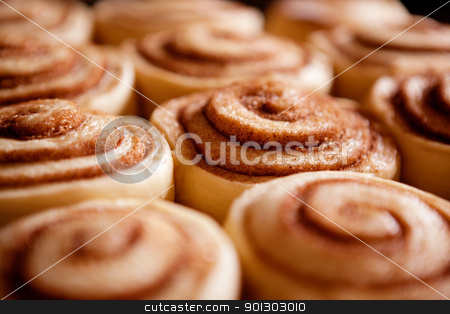 Cinnamon Buns stock photo, A detail of raw cinnamon buns - very shallow depth of field. by Tyler Olson