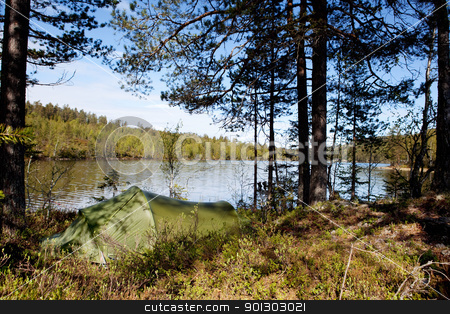 Camping stock photo, A tent set up near a lake in a forest by Tyler Olson