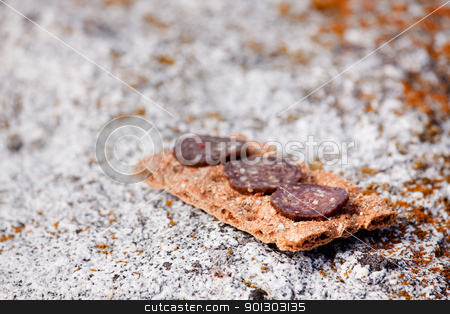Outdoor Food stock photo, A cracker with slices of meat - Shallow depth of field with focus on first meat slice by Tyler Olson