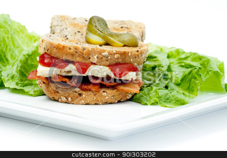 Denver Sandwich stock photo, A Western Sandwich (Denver Sandwich) made of omelette and bacon served on brown toast. by Tyler Olson