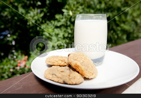 Milk and Cookies stock photo, A plate of milk and cookies in an outdoor setting by Tyler Olson