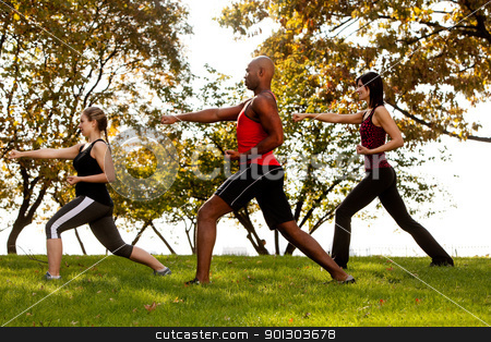 Karate stock photo, A group of people practicing martial arts in the park by Tyler Olson