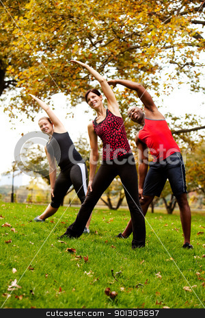 Group Exercise stock photo, A group of people exercising in a park by Tyler Olson