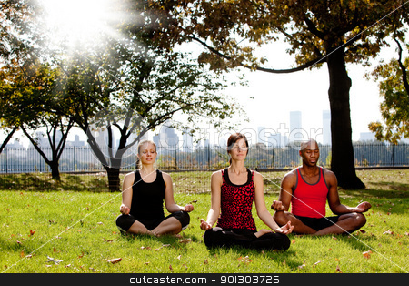 Yoga in Park stock photo, A group of people meditation in a city park by Tyler Olson