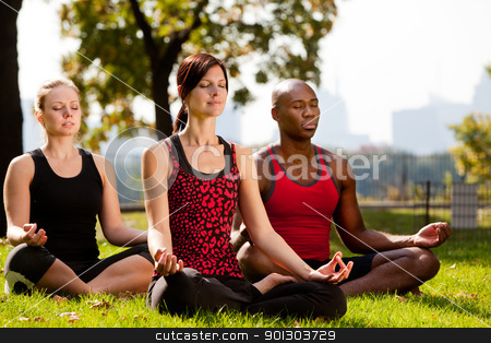 City Park Yoga stock photo, A group of people doing yoga in a city park by Tyler Olson