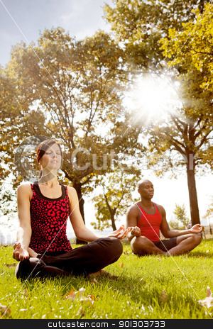 Meditation stock photo, A group of people meditation in the park - taken into the sun with lens flare by Tyler Olson