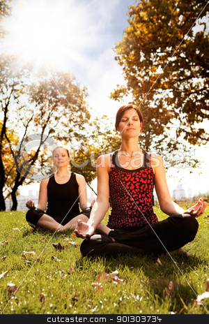 Peace stock photo, A group of people meditating in a city park  by Tyler Olson