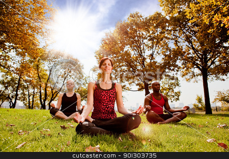 Meditation stock photo, A group of people meditation in a city park in the morning - taken into the sun with lens flare by Tyler Olson