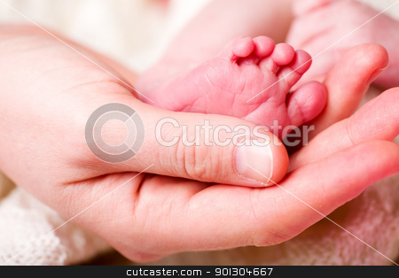 Newborn Baby Foot stock photo, The foot of a newborn baby in the hand of a mother by Tyler Olson