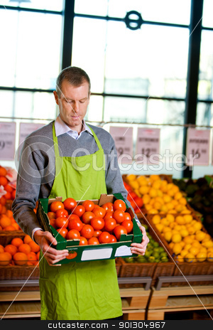 Grocer with Tomatoes stock photo, A male grocery owner with a box of ripe tomatoes by Tyler Olson