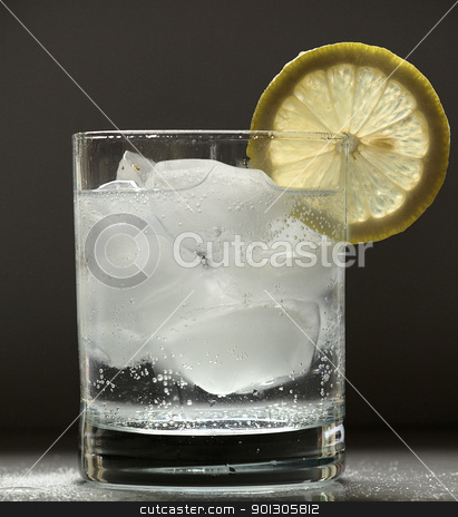 Gin & Tonic stock photo, A refreshing drink by SRSImages
