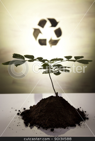 Plant stock photo, Recycling plant, ecology background. by Sebastian Duda