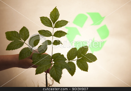 Eco plant stock photo, Recycling plant, ecology background. by Sebastian Duda