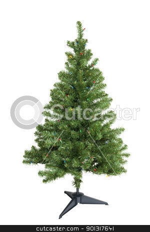 Christmas Tree stock photo, Christmas tree, isolated w/clipping path by Bryan Mullennix