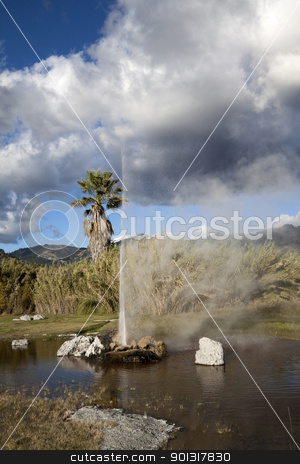 Geyser Pond stock photo, A natural geyser shooting water out of the ground and into the air by Kevin Tietz