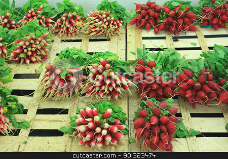bunches of fresh radishes on a market stall stock photo, bunches of fresh radishes on a market stall by Chretien