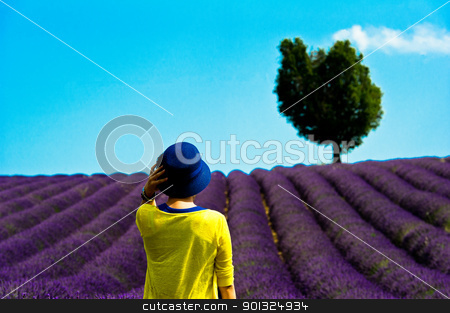 Tourist in front of fields of lavander stock photo, Europe, France, Alpes-de-Haute-Provence (04), parc naturel régional du Verdon, plateau de Valensole, touriste devant un champs de lavande. by Scanella