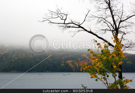  Lake  stock photo, Canoing at Killarney Lake in overcast day