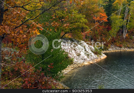 Lake  stock photo, Reflection of colorful forest in lake surface in the overcast day by Pavel Cheiko
