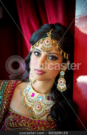 Beautiful Indian Bride stock photo, Image of a beautiful Indian bride traditionally attired by Greg Blomberg