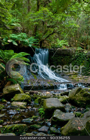 Waterfall in deep forest stock photo, The beautiful waterfall in forest, spring, long exposure, Horseshoe Falls Mount Field National Park, in Tasmania Australia , austraila russell creek , Mt by Ulrich Schade