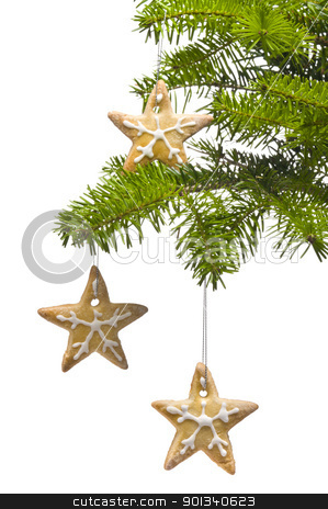 Tree star shape cookies as Christmas tree decoration stock photo, Tree star shape cookies as Christmas tree decoration, over white by Ulrich Schade