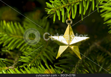 Star shape Christmas tree decoration stock photo, Star shape Christmas decoration in real tree by Ulrich Schade