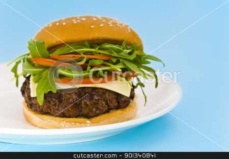 Hamburger with cheese and mixed tomato and salad stock photo, Hamburger with cheese and mixed tomato and salad and no onion by Ulrich Schade