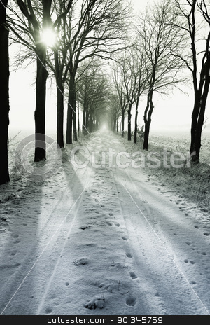 Winter alley  stock photo, alley in winter    by klenova