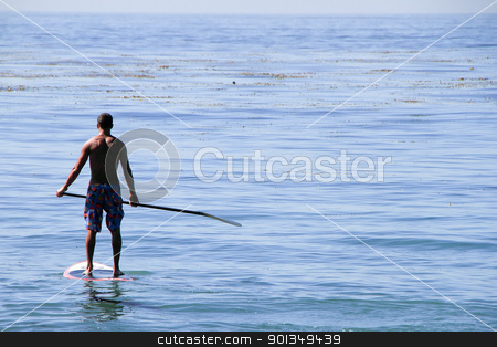 Paddle boarder surfer stock photo, back view of adult man standing on paddle board by Juliet N Newton