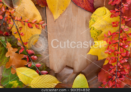 Autumn Background stock photo, Autumn Background - Color Autumn Leafs on Wooden Background by JAMDesign