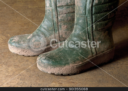 dirty gumboots stock photo, pair of green dirty gumboots in rusty back by prill