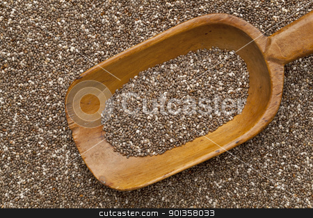 chia seed on scoop stock photo, wooden rustic scoop and background of organic chia seeds rich in omega-3 fatty acids by Marek Uliasz