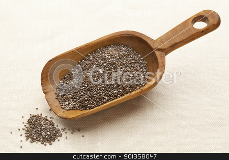 scoop of chia seeds stock photo, chia seeds on a rustic wooden scoop against canvas background by Marek Uliasz