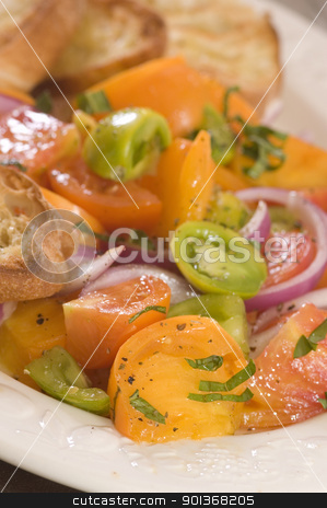 fresh tomato salad with toast stock photo, fresh tomato salad with toast by Jeffrey Banke